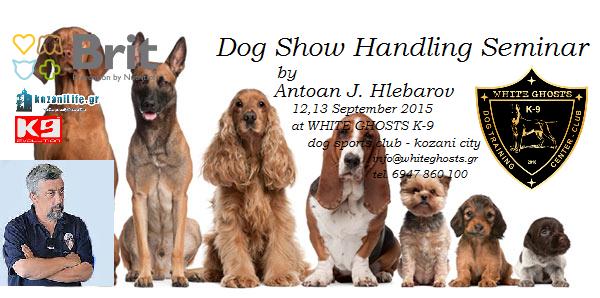 Σεμινάριο Χειρισμού και Παρουσίασης σκύλων σε Εκθέσεις Μορφολογίας
